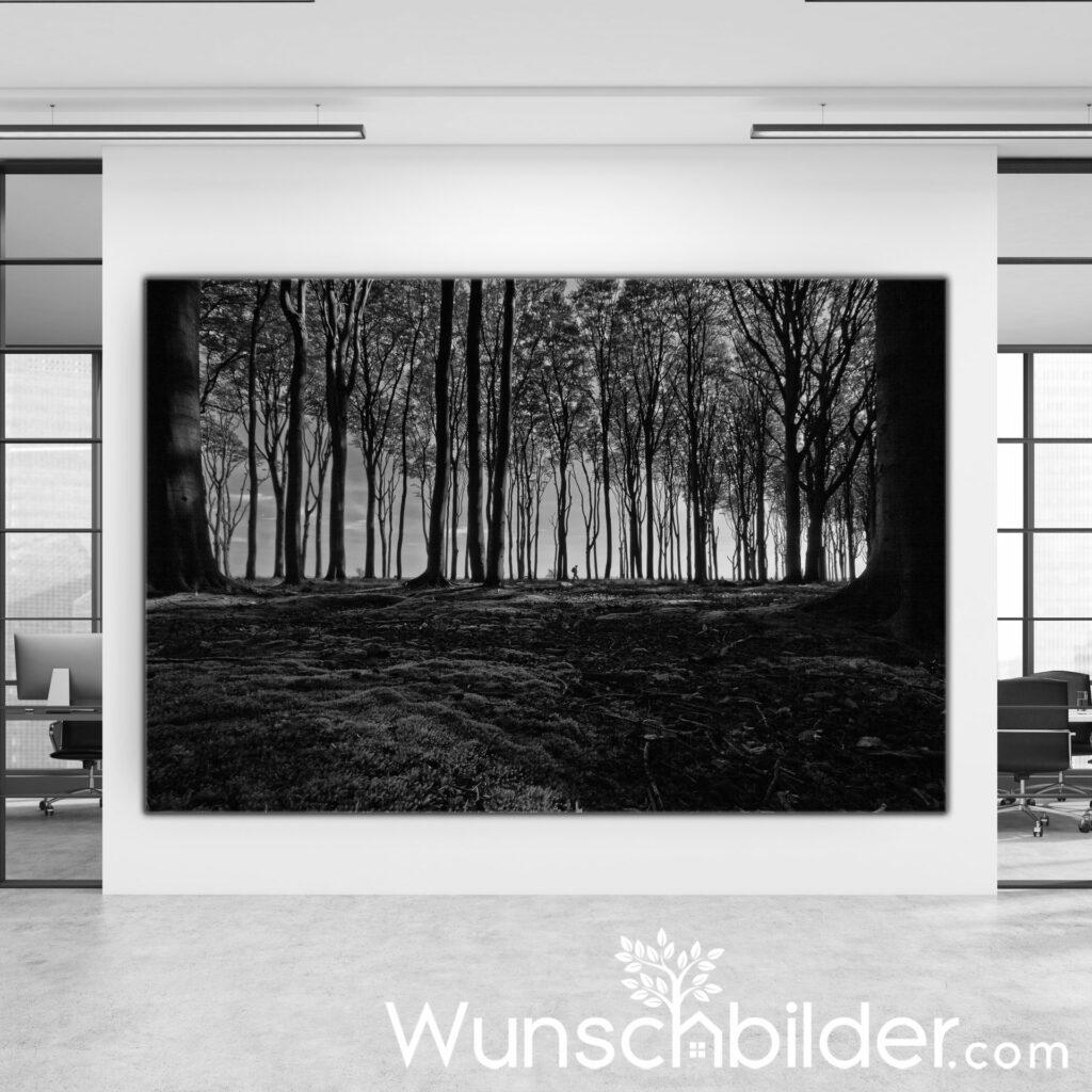 Lonely Wanderer - Gespensterwald Nienhagen - Fotokunst von WUNSCHBILDER.com