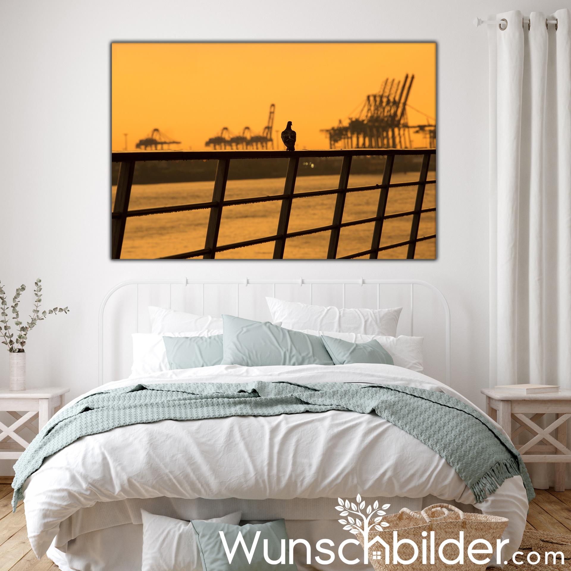 Hamburger Hafen Romantik - goldene Stunde im Hafen Hamburg