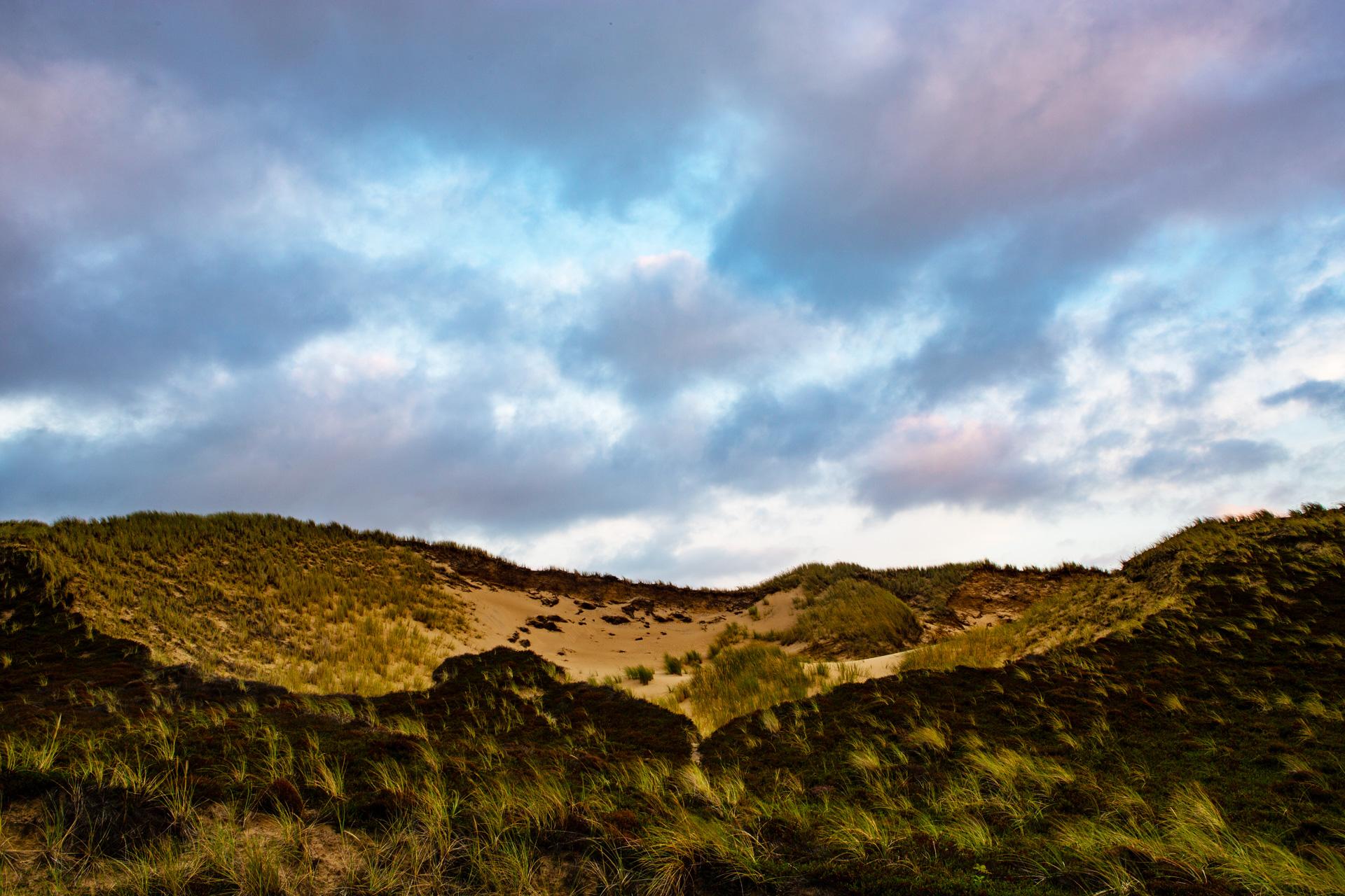 Sylter Dünenlandschaft - Dünen auf der Insel Sylt - Leinwandbild - EMOZION