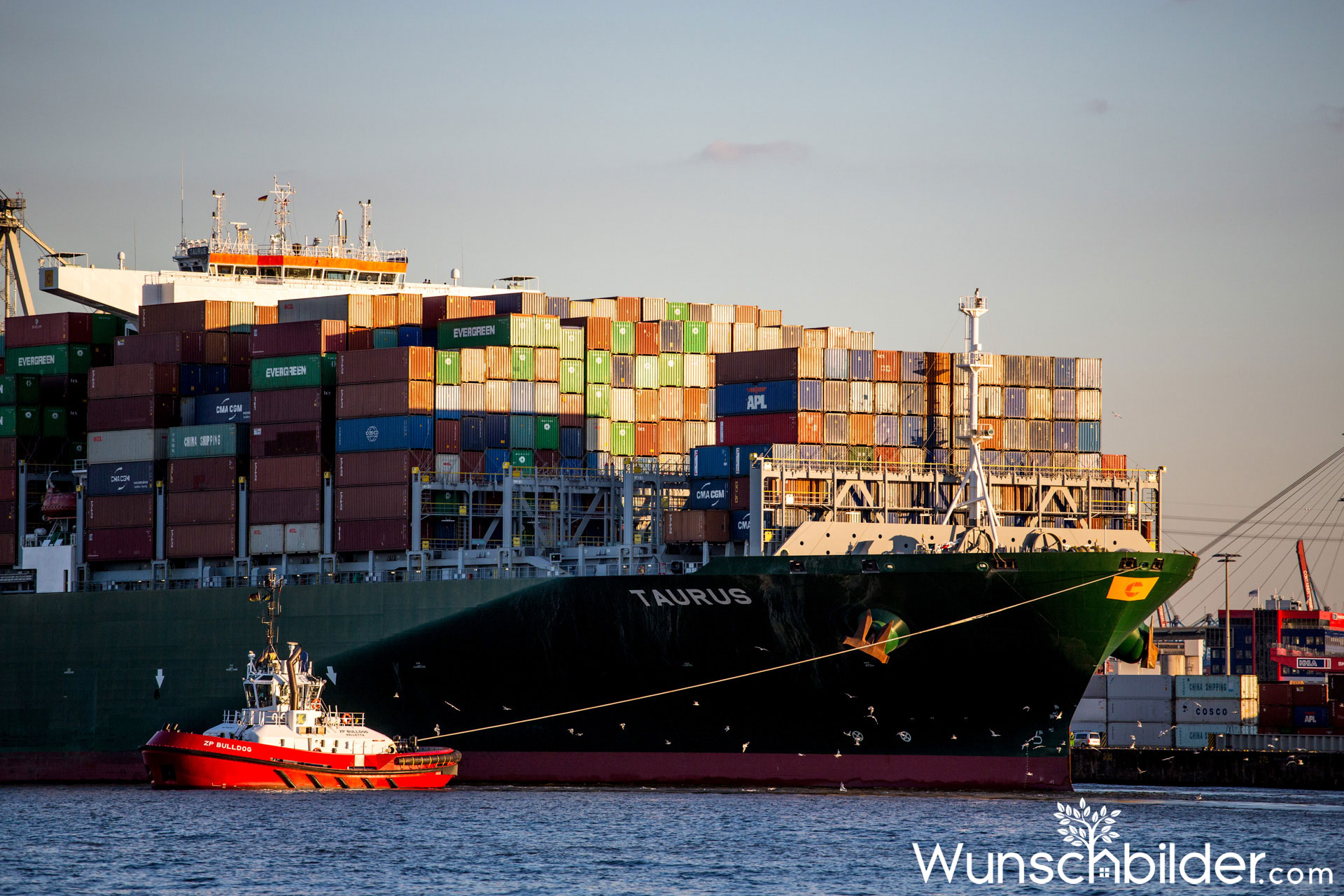 Containerschiffe im Hamburger Hafen - wunschbilder.com