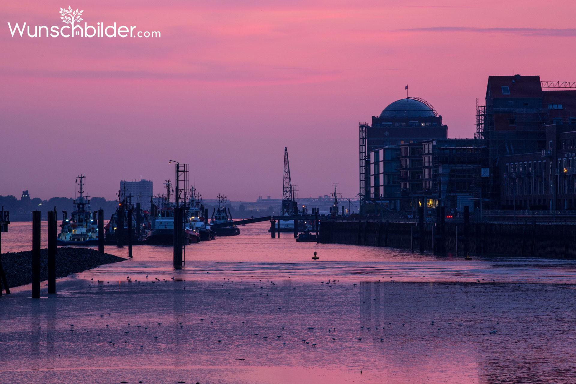 Hamburg Hafen Romantik - Schiffe in der Abendsonne - Fotografie auf Leinwand
